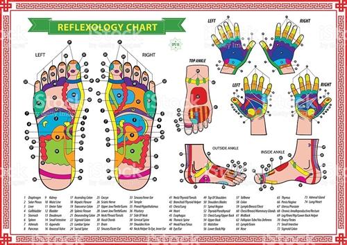 REFLEXOLOGIA (PÉS E MÃOS)